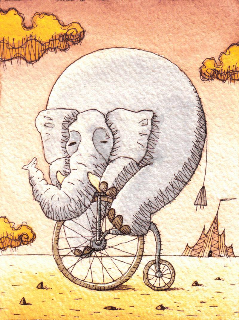 Illustratore Disegnatore Lorenzo Donati Natalori Milano elefante bicicletta circo
